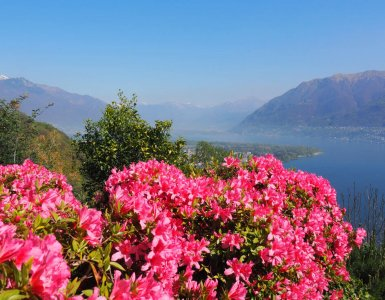 10 Reasons to Love Ticino