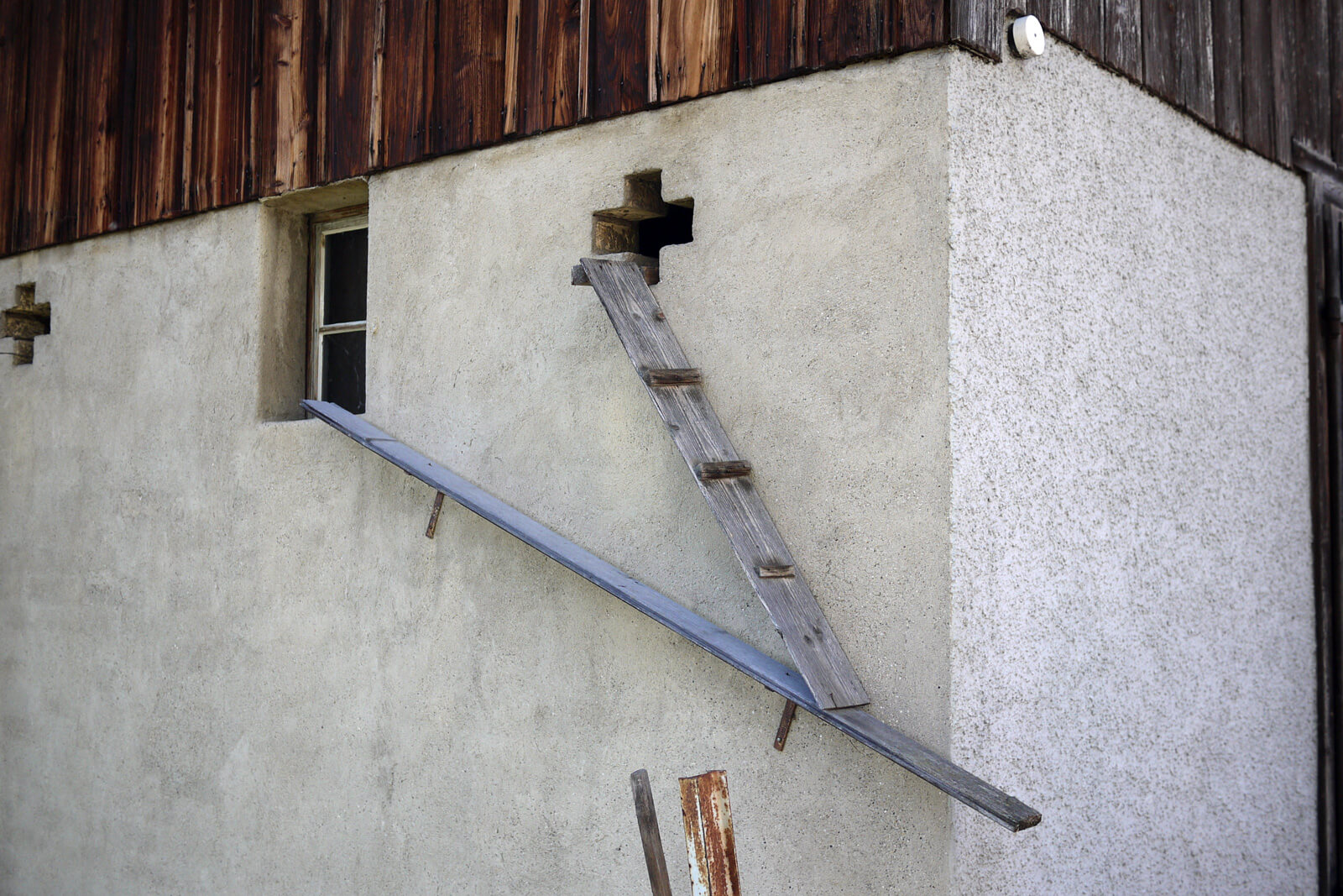 Scary cat ladders in Switzerland