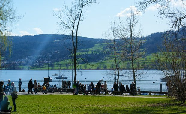 Greifensee at the Lake