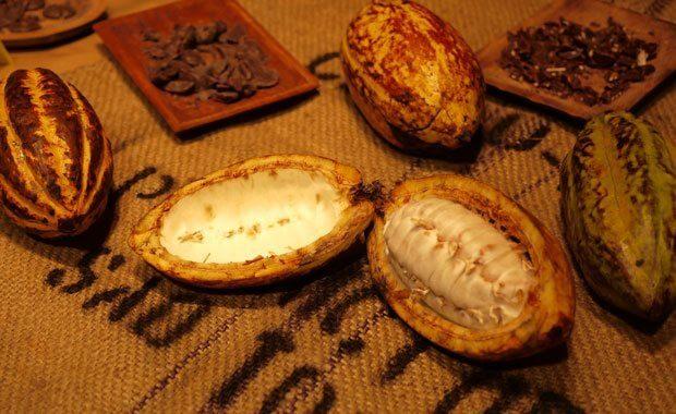 Salon du Chocolat - Chocolat de São Tomé & Principe
