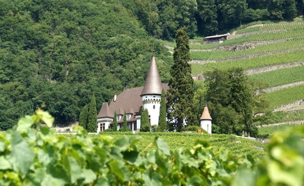 Notes on Swiss Wine - Maison Blanche in Yvorne