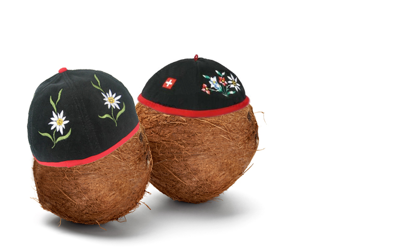 World Compliment Day - Swiss are coconuts