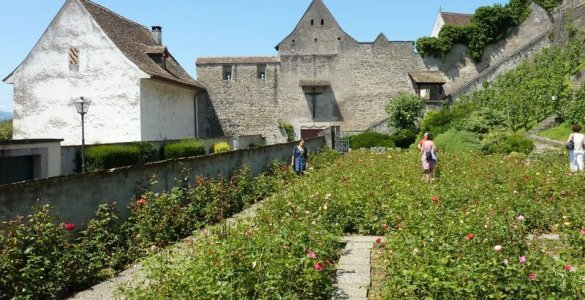 Rapperswil - City of Roses in Switzerland