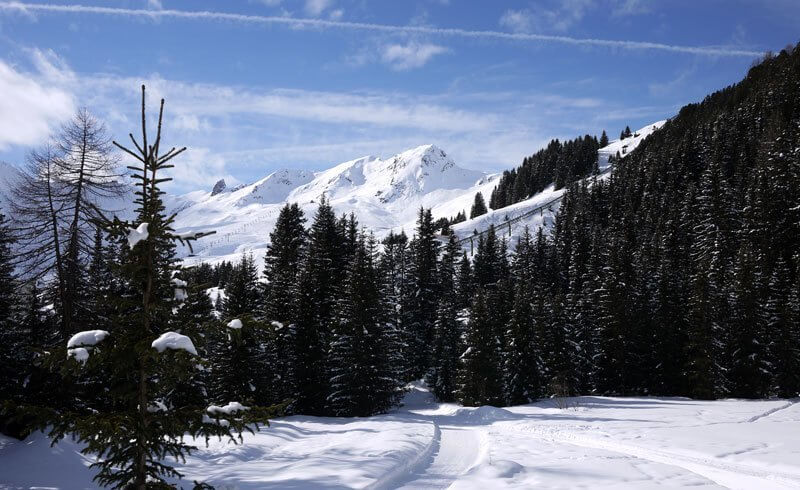 Arosa - Winter Wonderland