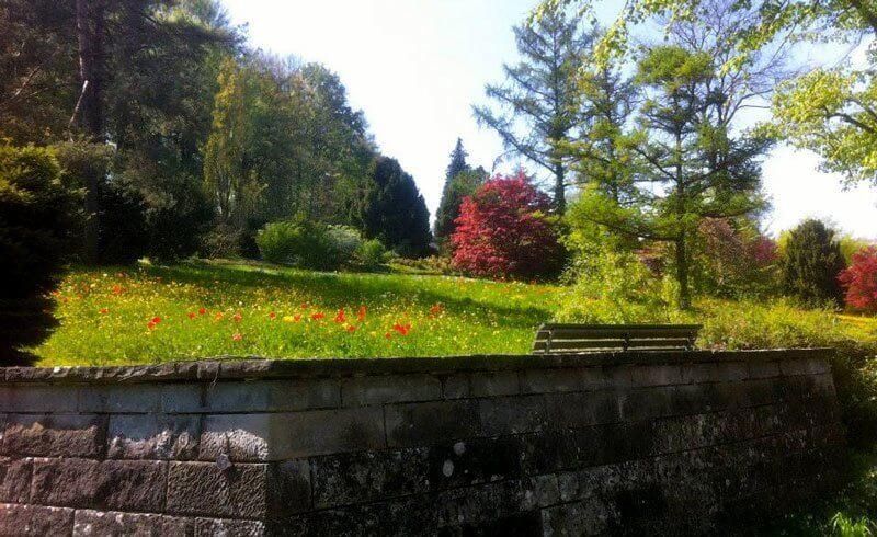 Zurich Cemetery - Friedhof Nordheim