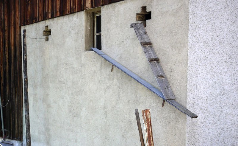 Cat Ladder in Eglisau