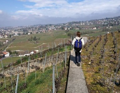 Hiking above Lutry