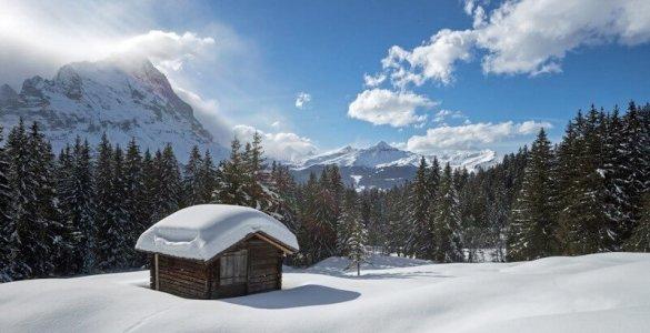 Speedyphoto - Stepfi Downhill Slope