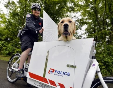 Police Dog Whisk - Lausanne Police Department