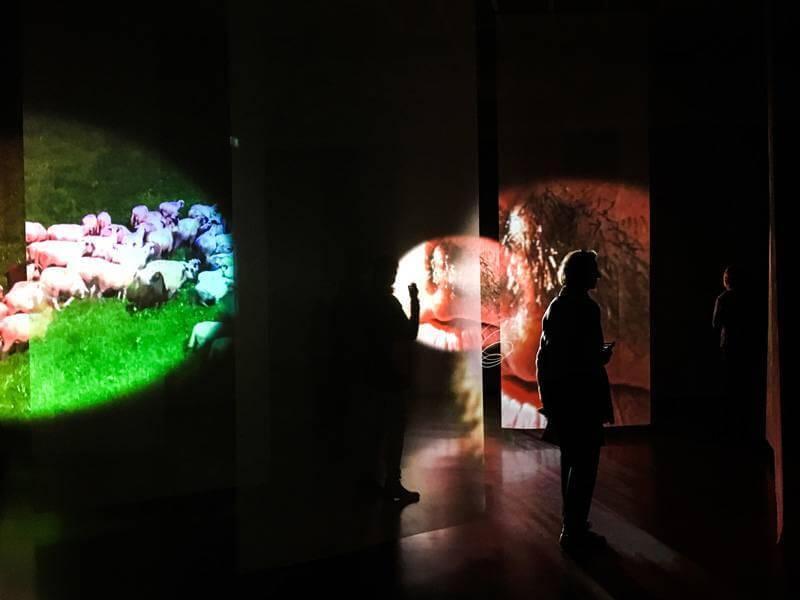 Pipilotti Rist Exhibit Kunsthaus Zürich