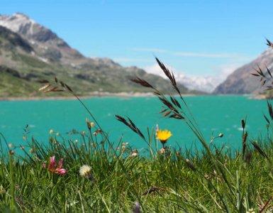 Bernina Pass Lake