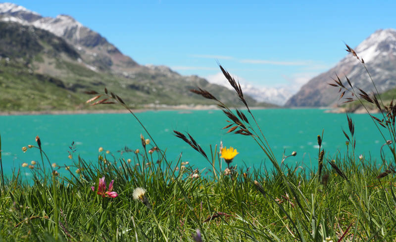 Bernina Pass Lake