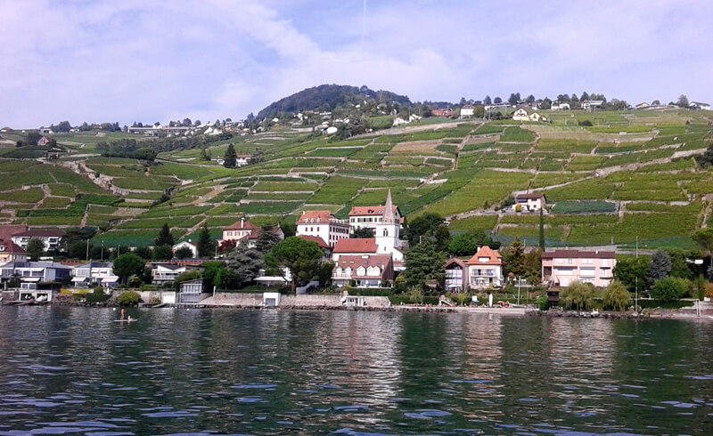 Lavaux Passion - View of the Shoreline