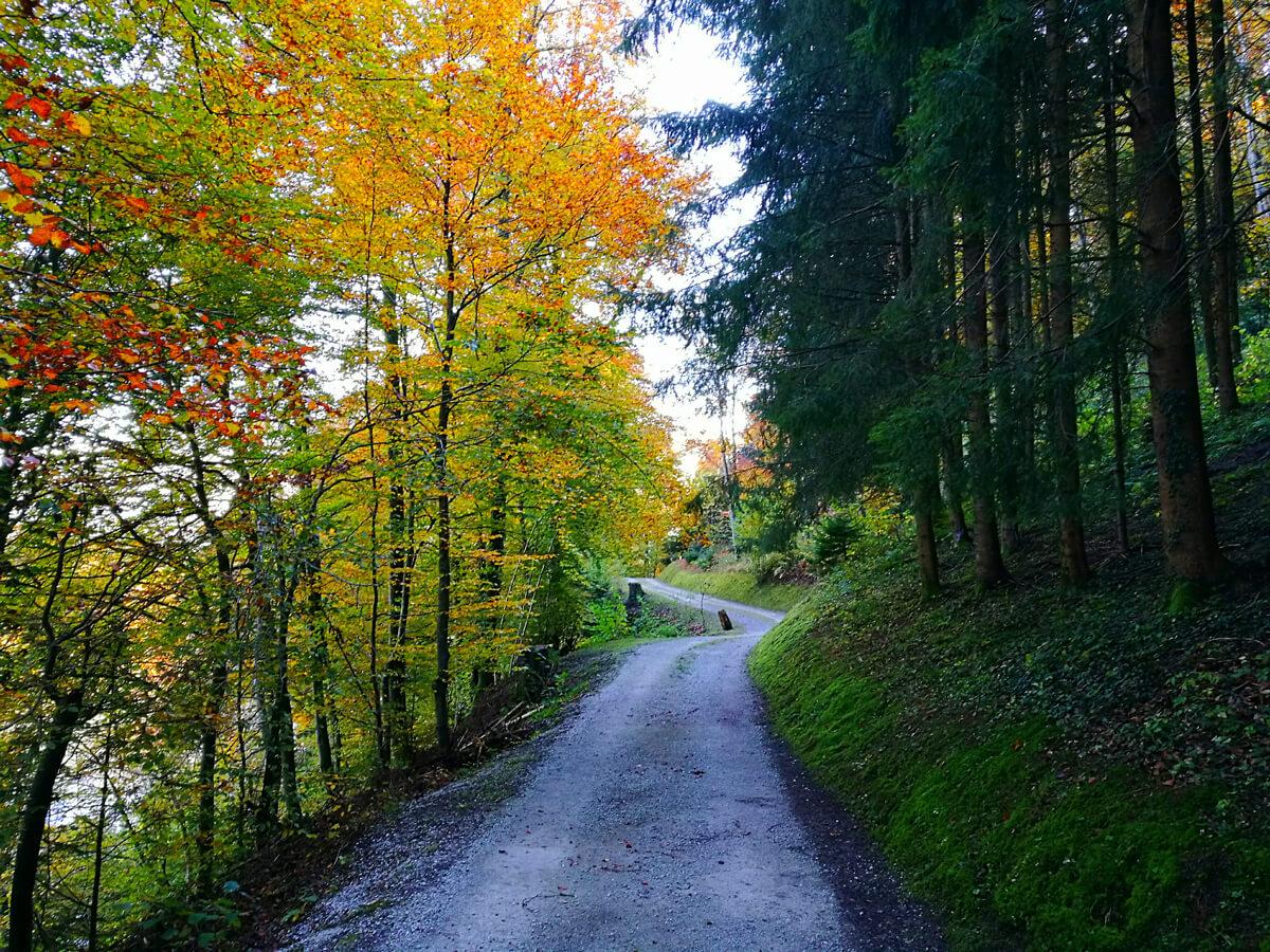 Switzerland Fall Colors