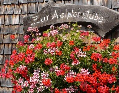 Typical Swiss Geranium Flowers