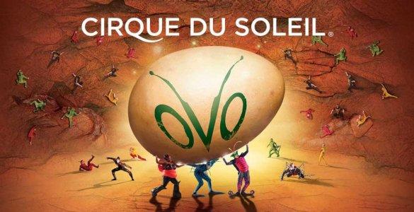 Cirque du Soleil OVO in Switzerland
