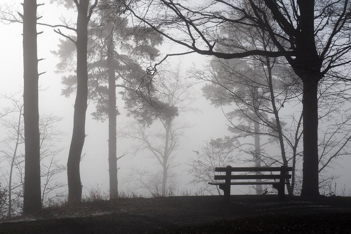 Fog on Pfannenstil