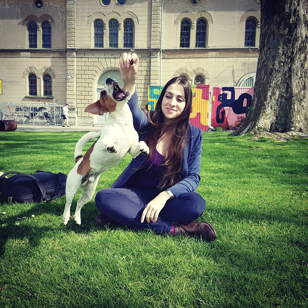 Dogs in Switzerland