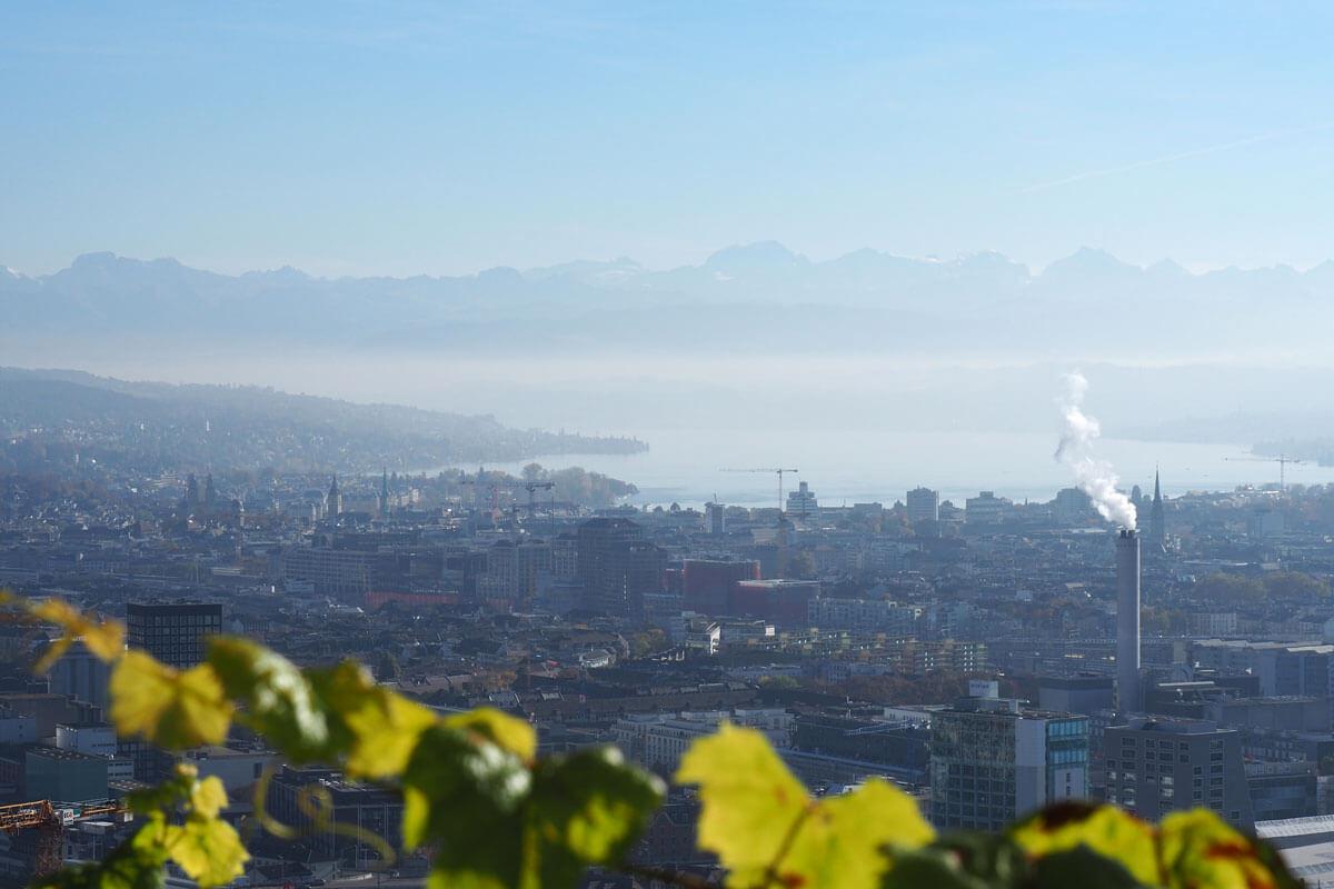 Zürich is a runner's paradise