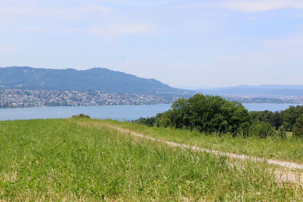 Zürich is a runner's paradise
