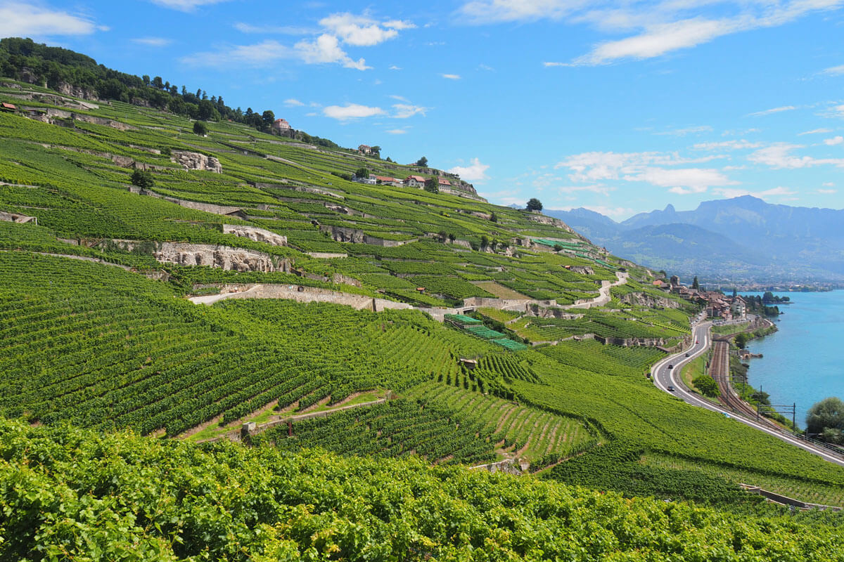 Lavaux Vineyards at Lake Geneva, Switzerland