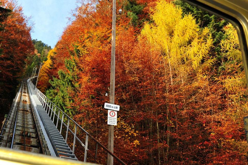 Mt. Niesen Staircase