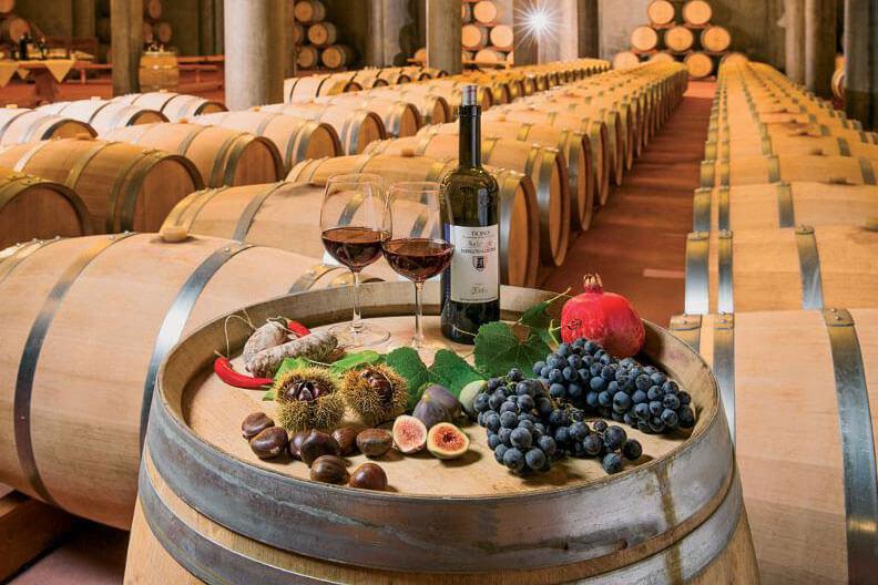 Open Wine Cellar Days Ticino