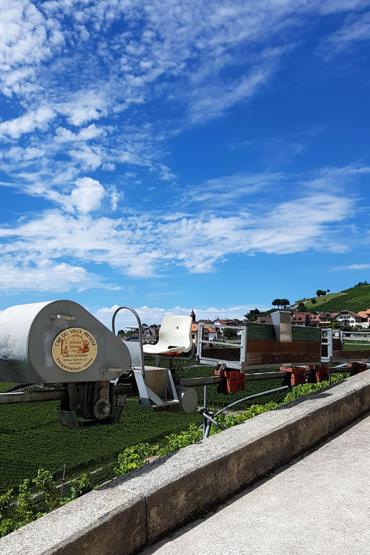 Lavaux Wine Hike in Switzerland