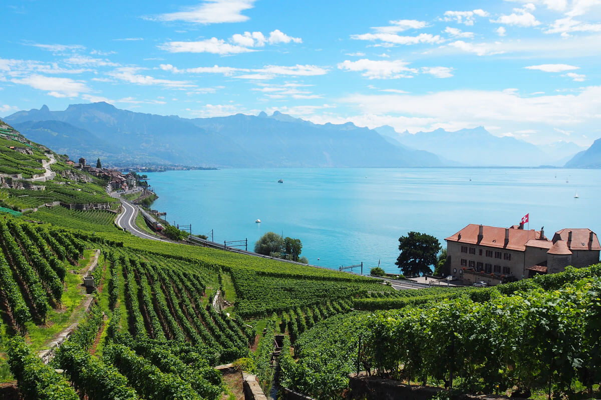 Lavaux Wine Hike in Switzerland