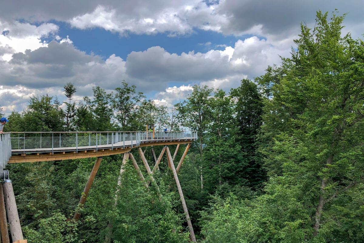 Switzerland Forest Canopy Walkway