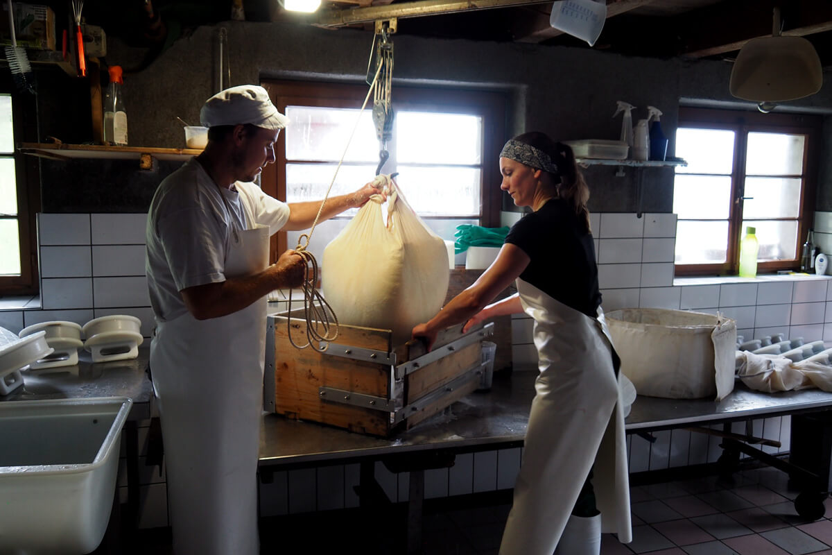 Alpine Cheese Making at Musenalp in Isenthal, Switzerland