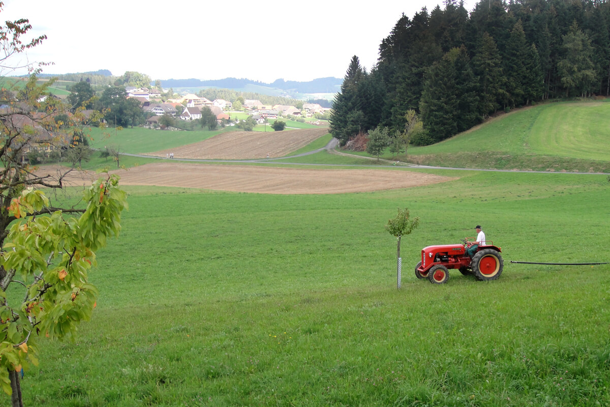 Emmental Valley in Switzerland