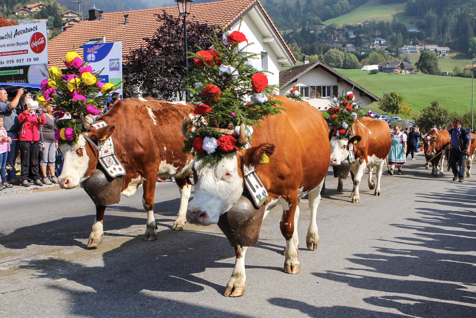 Alpabzug Alpine Cow Parade in Charmey