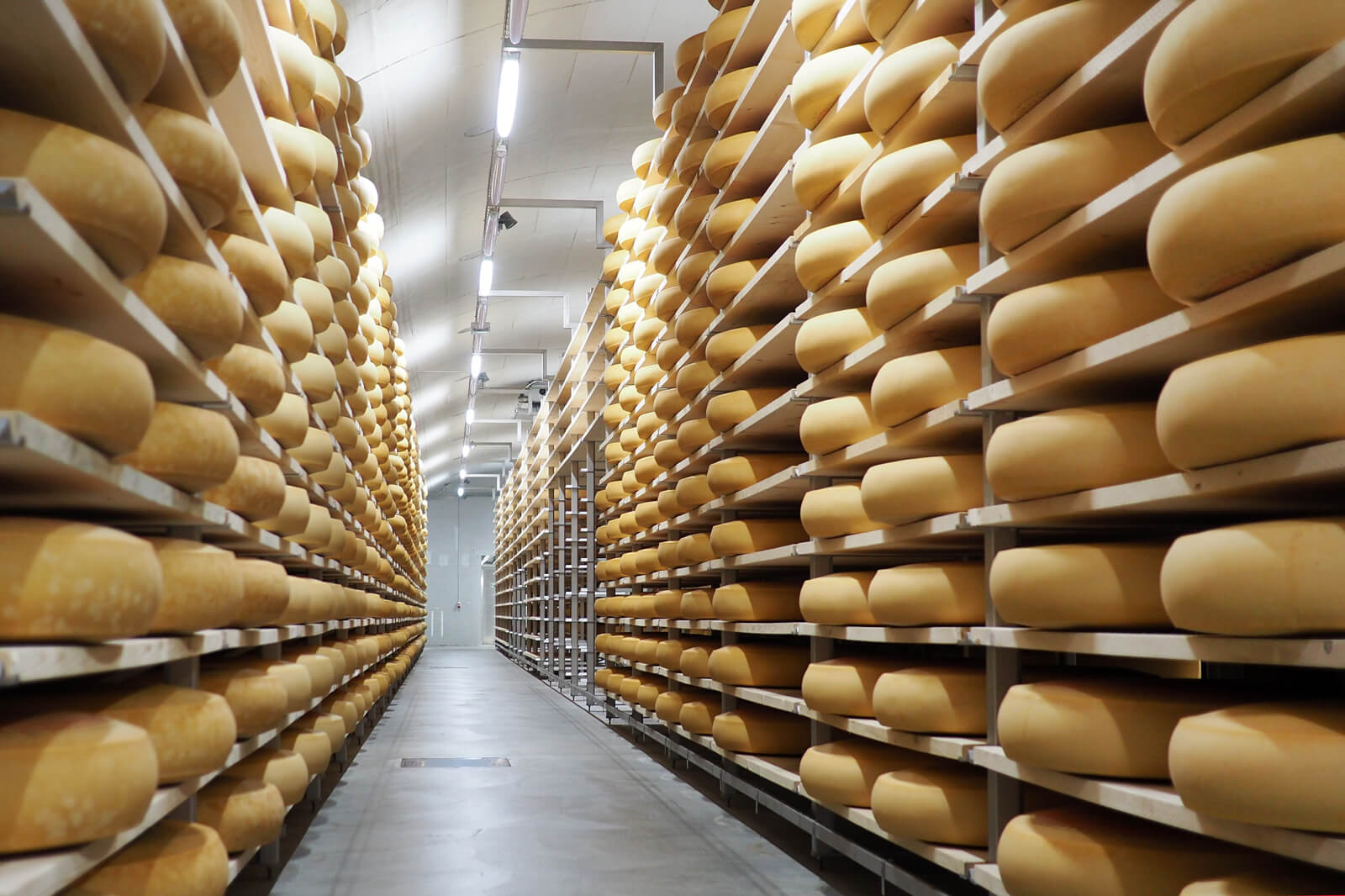 Emmentaler Cheese Storage Facility in Switzerland