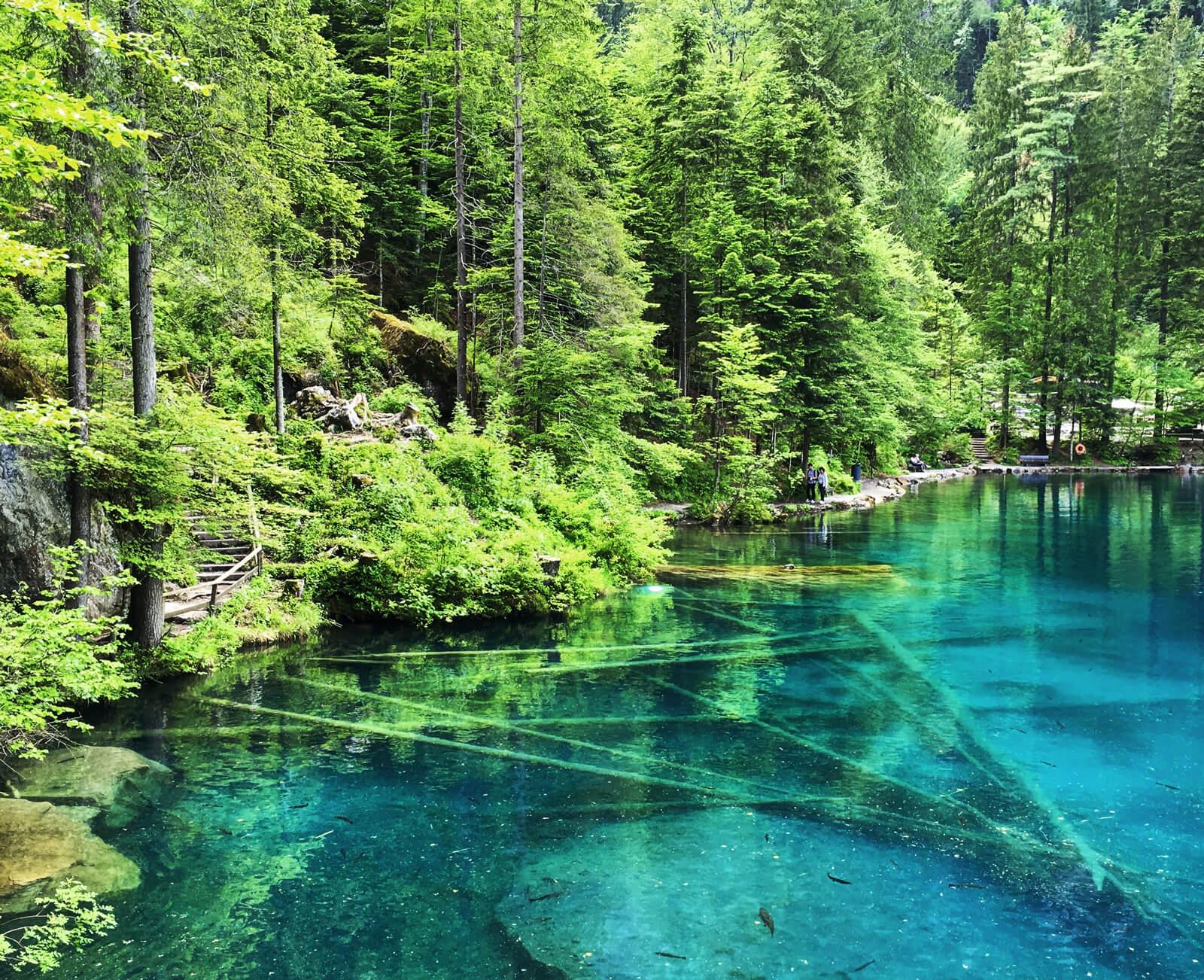 Lake Blausee in Switzerland during summer