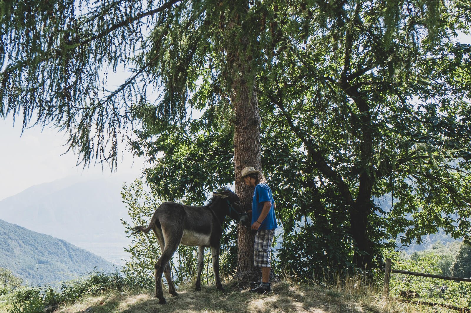 Campo Cortoi - Volunteering in Ticino, Switzerland