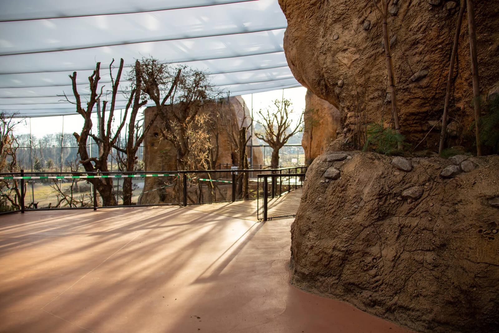 Lewa Savanne Zoo Zürich