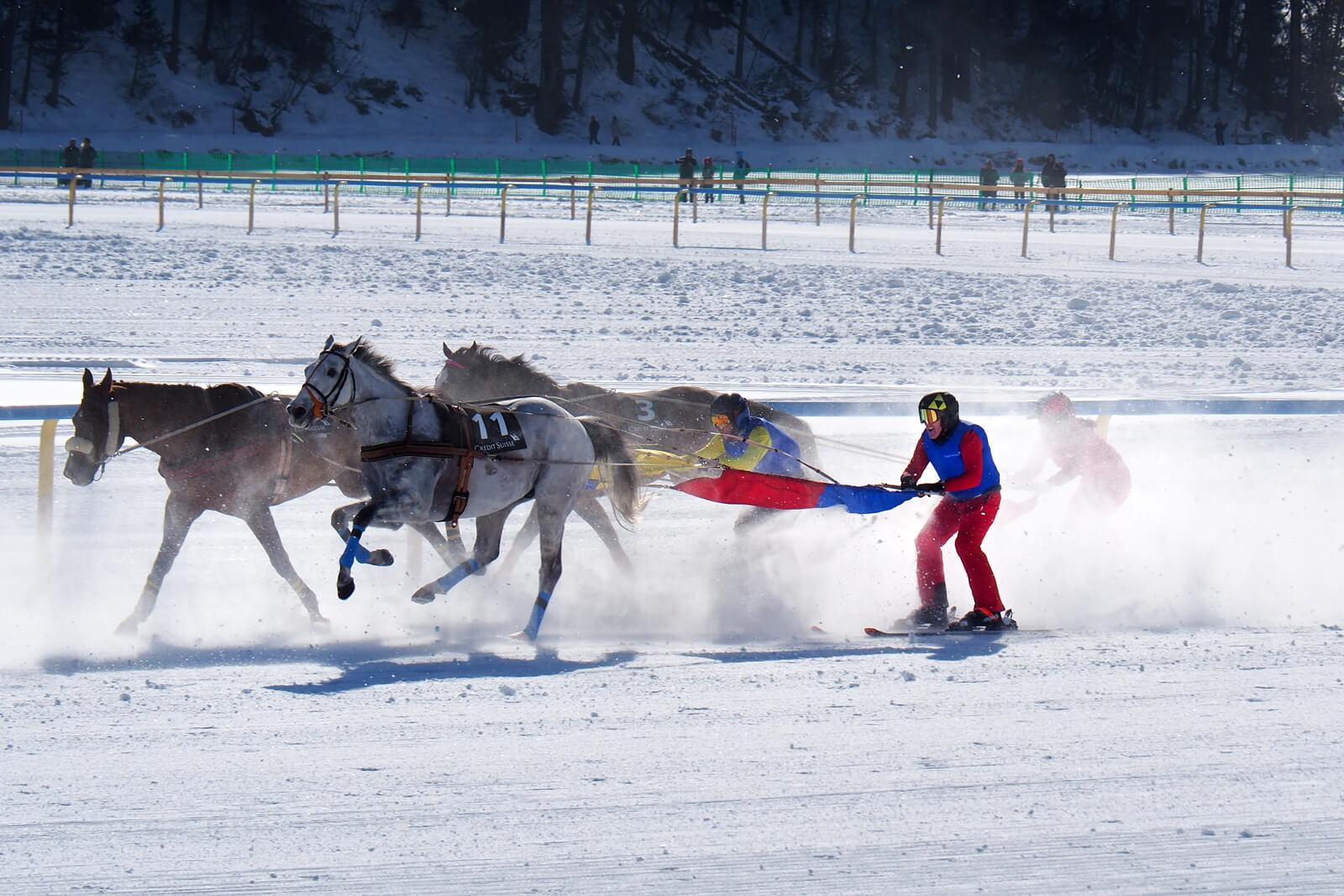White Turf St. Moritz 2020 - Skijoring 9.2.20