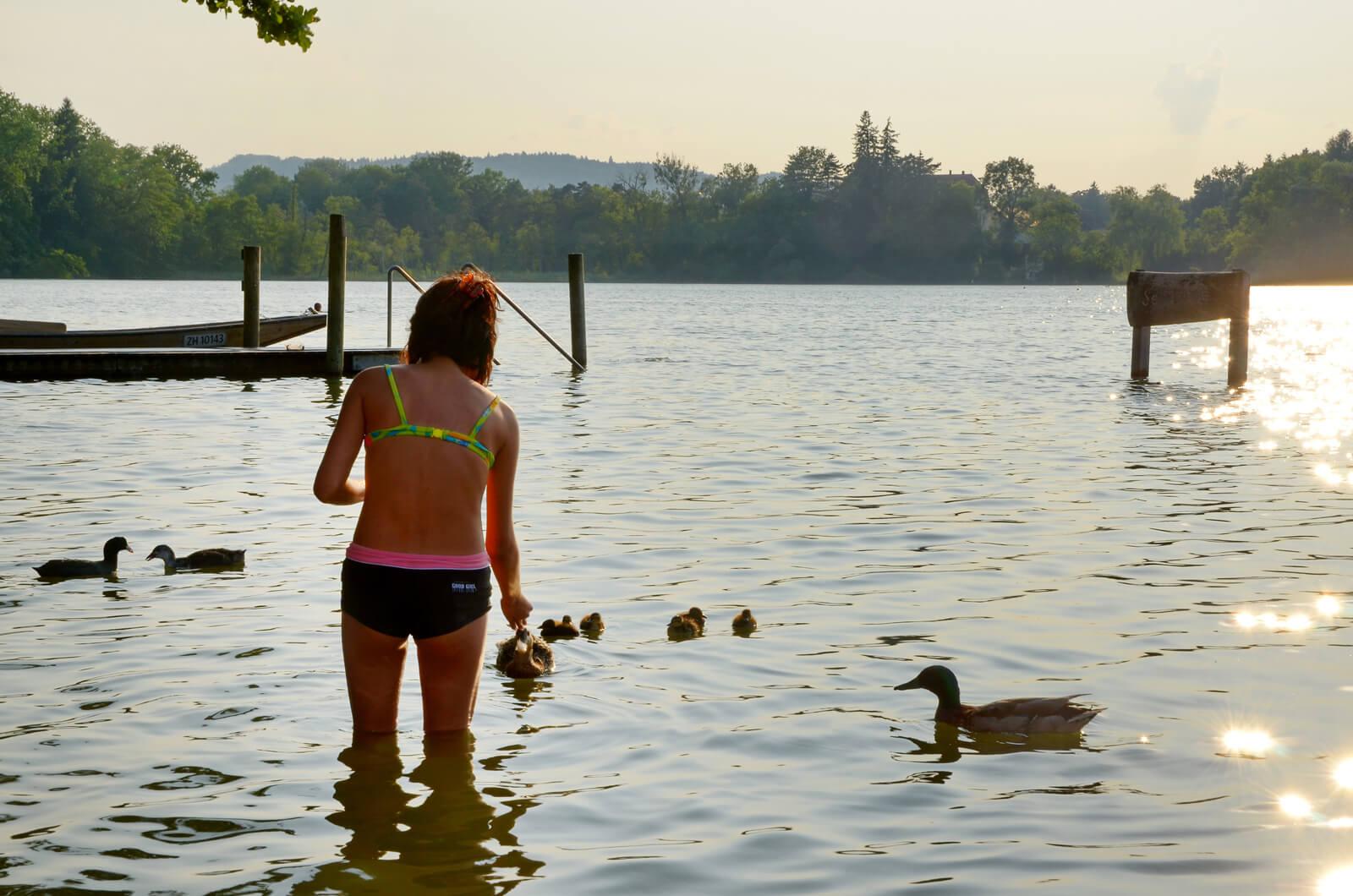Lake Unterer Katzensee near Zurich