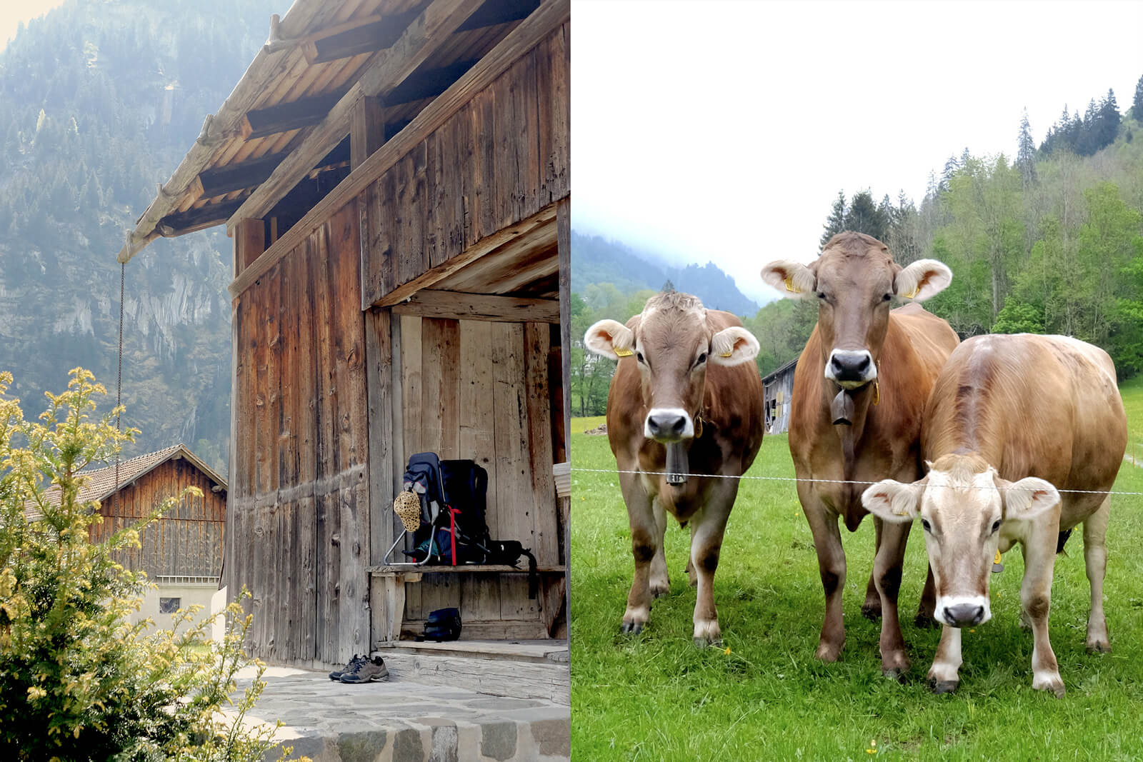 Ferien im Baudenkmal - Historic Vacation Homes in Switzerland
