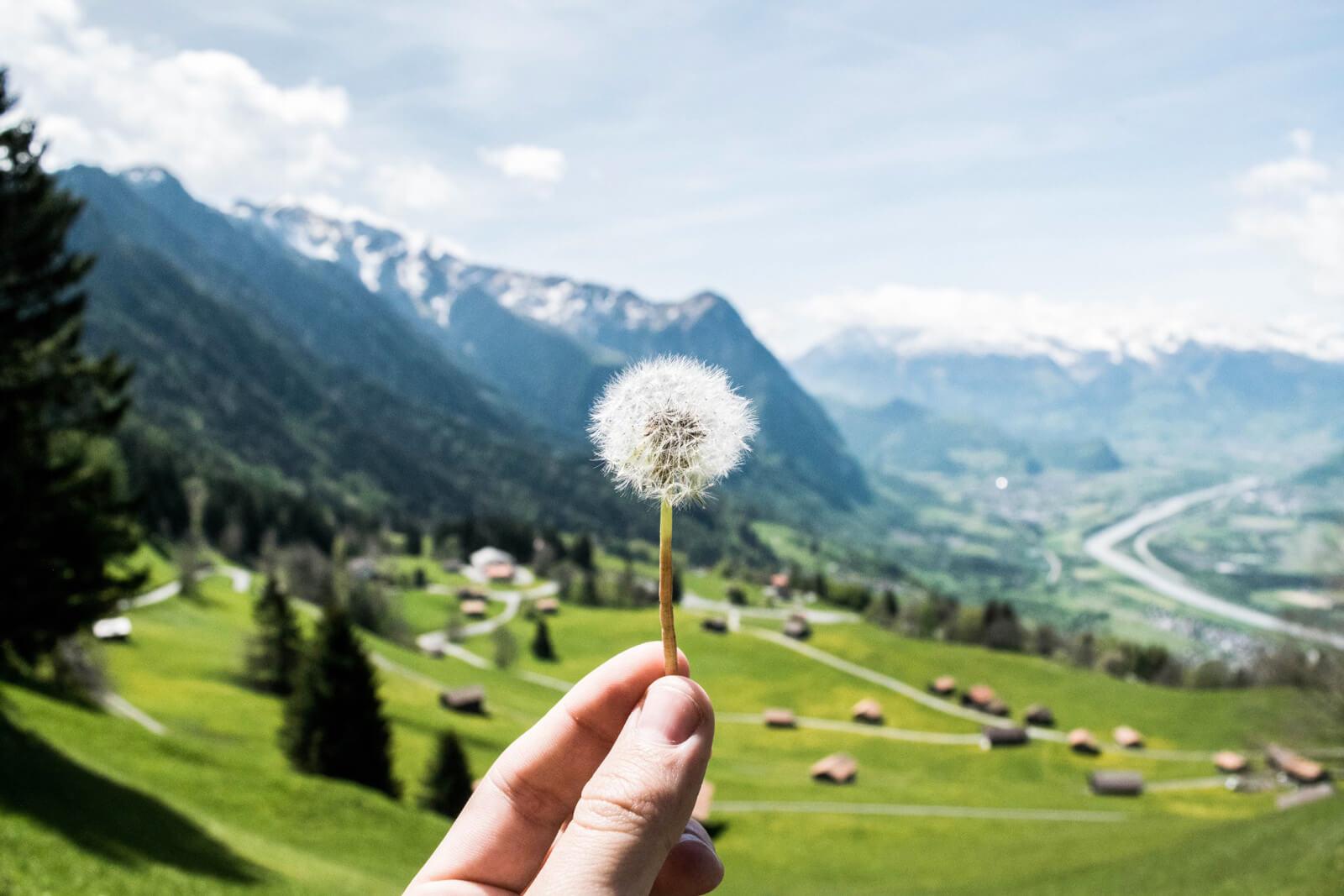 Reasons to Visit Liechtenstein