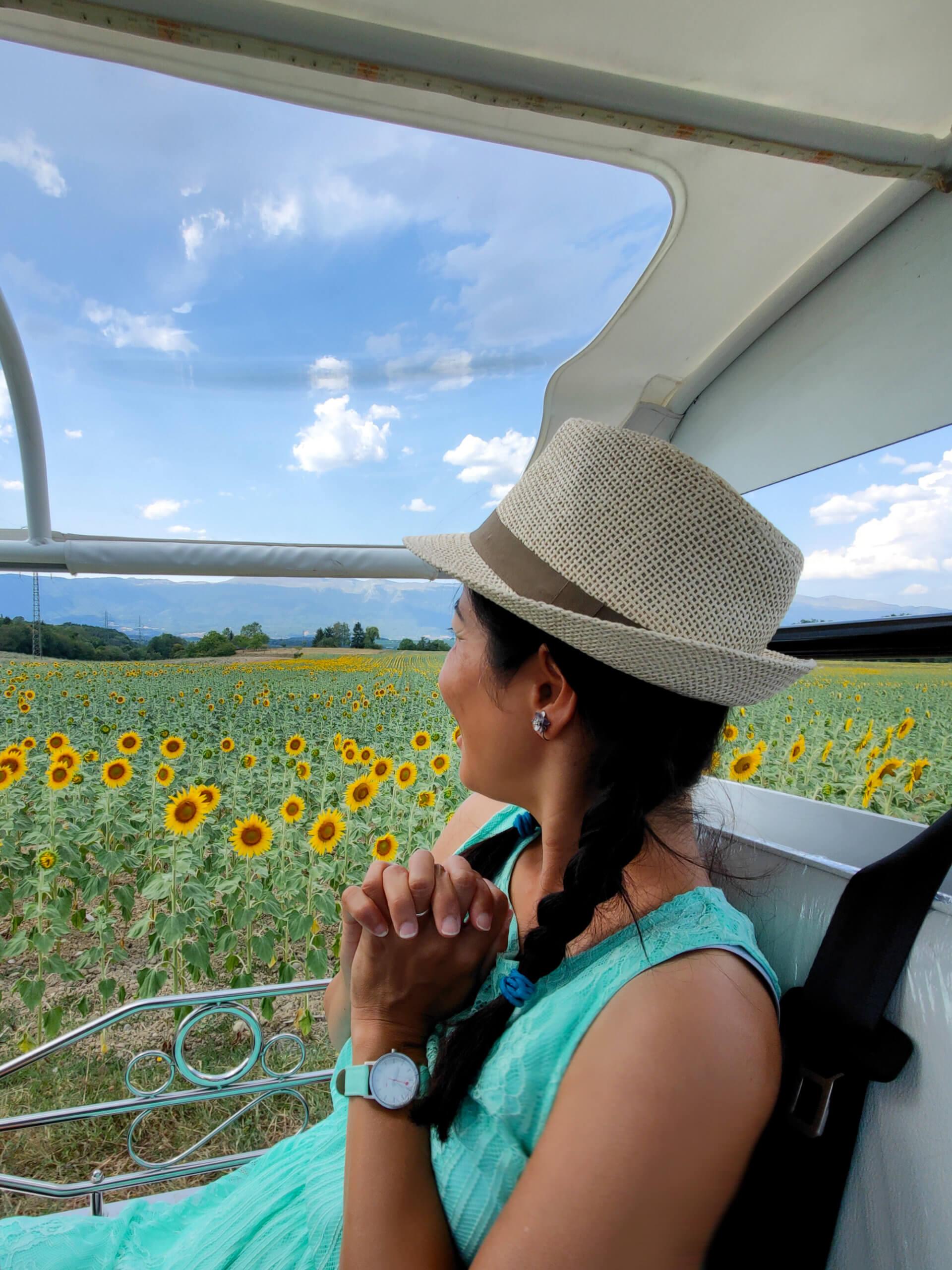 Resto Tuk Tuk Geneva - Sunflower Fields