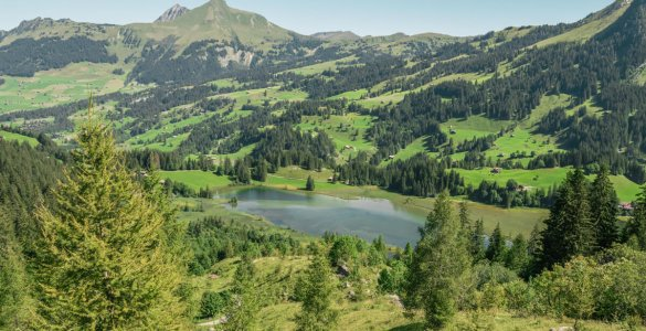 Lake Lauenen in the Bernese Alps (Lauenensee)