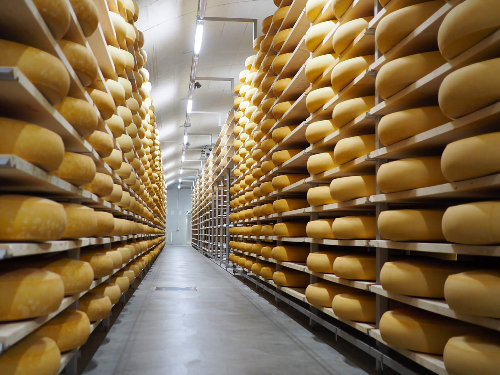 Cheese in Switzerland - Emmental Cheese Factory