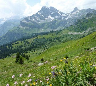Hiking in Braunwald during Summer