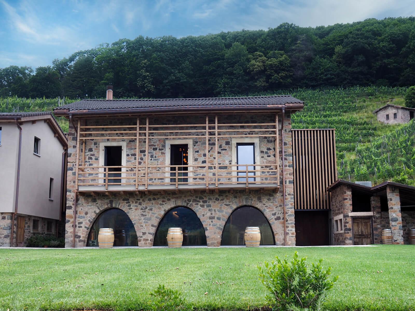 Tenuta Castello Morcote Vineyard