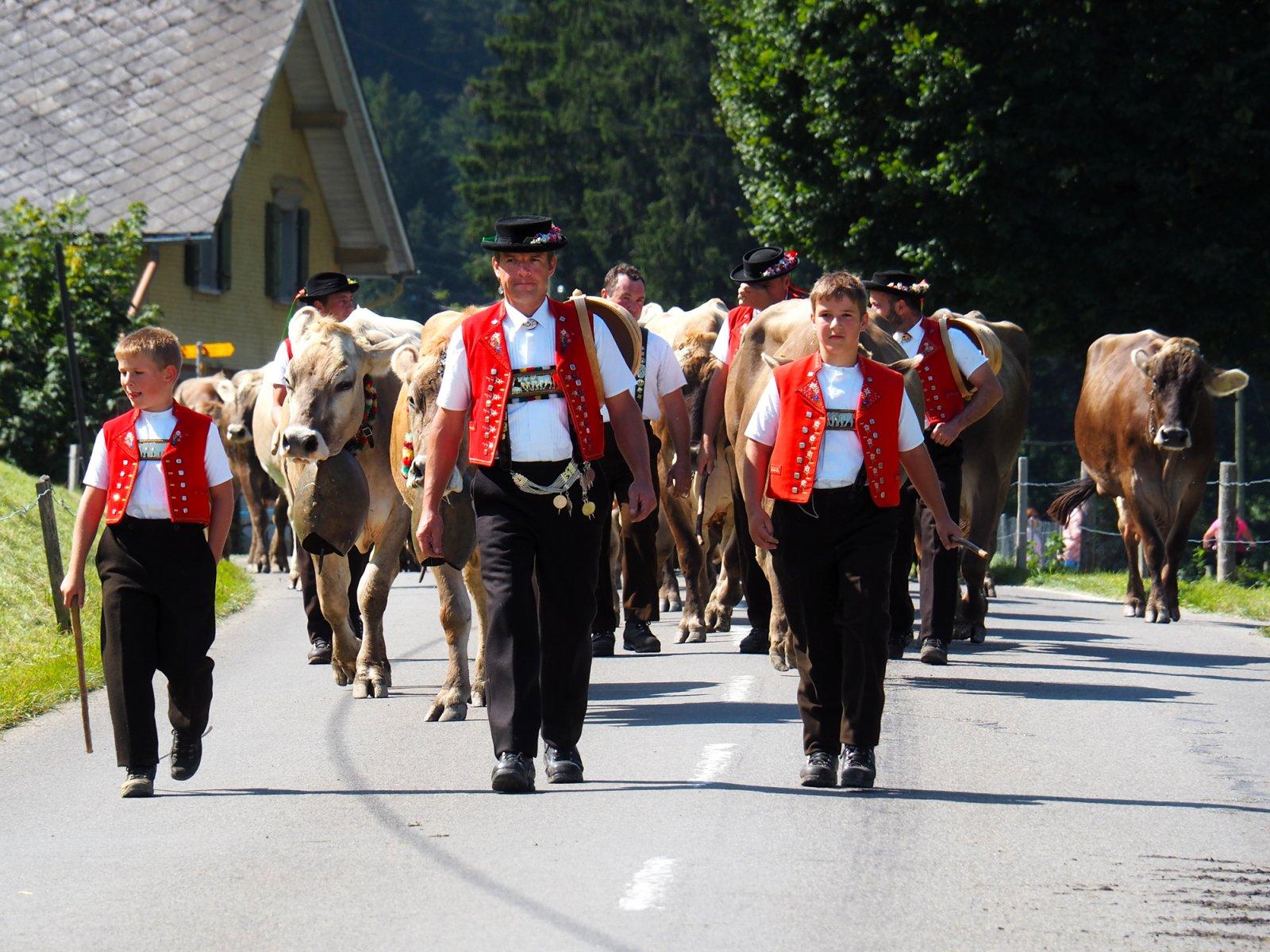 Alpine Descent in Appenzell 2021