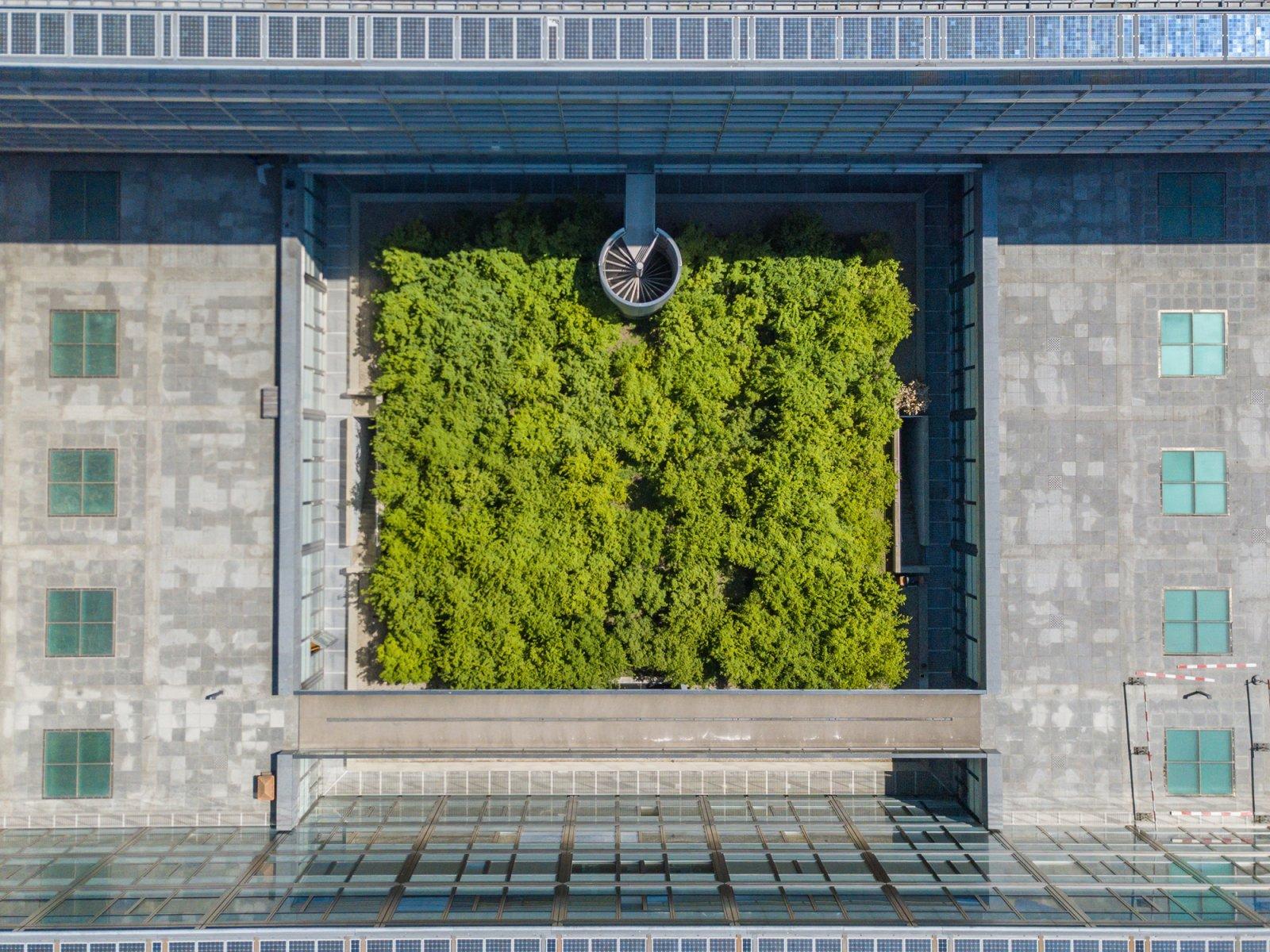 Botanical Gardens in Zurich - Zurich University Garden Aerial View
